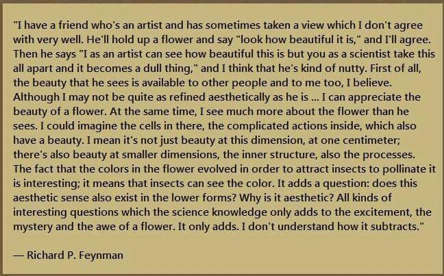 Feynman_1